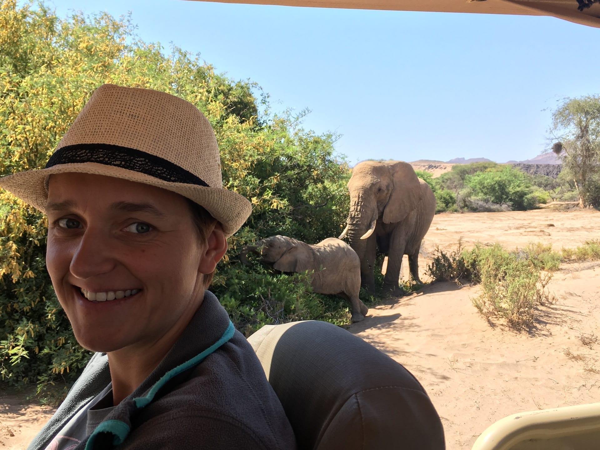 ALGEMEEN - NAM - Desert Elephant Lein 2 - 2018