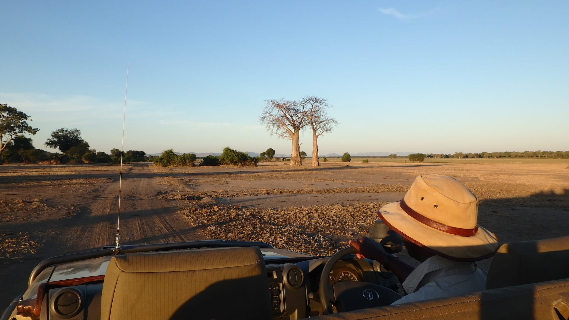 ALGEMEEN - ZAM - Gamedrive in het Lower Zambezi National Park