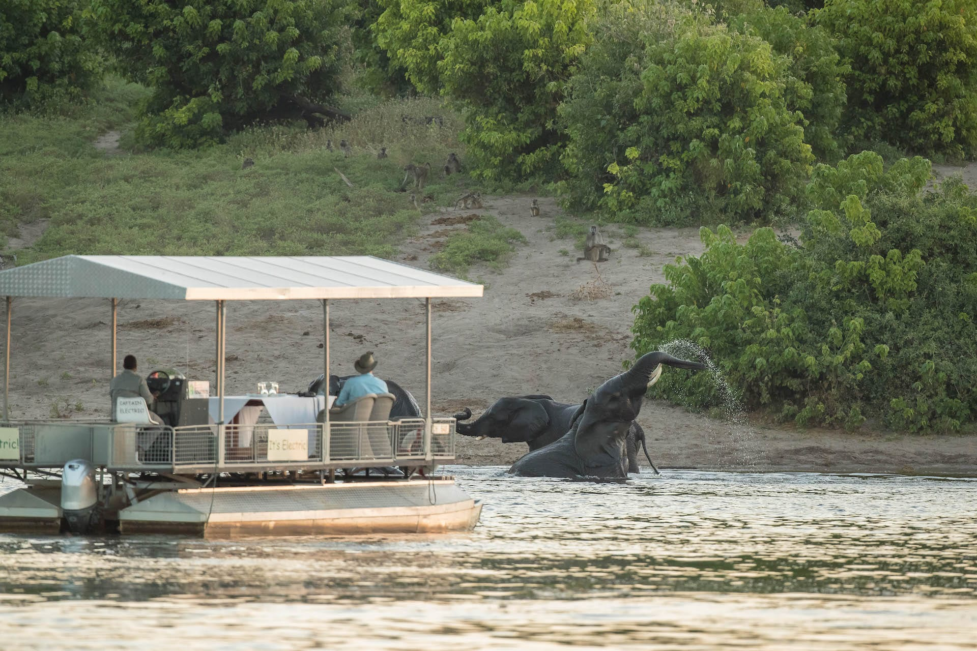 ALGEMEEN - Chobe Game Lodge - cgl-jun18-boats-48