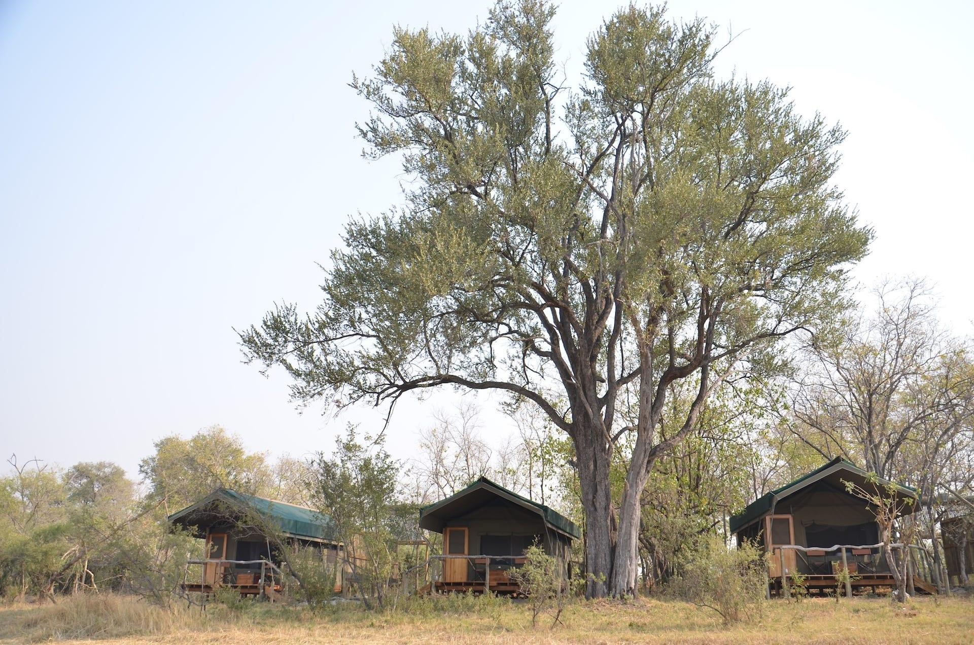 ALGEMEEN - Sango Safari Camp - meru_tents_sango_001