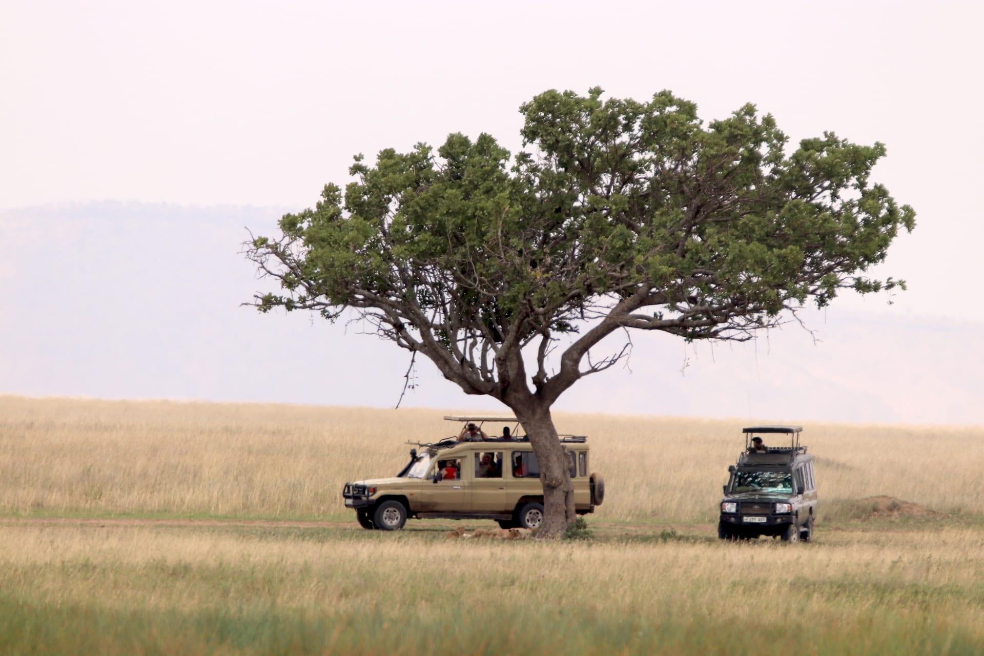 ALGEMEEN - TZ - Serengeti IMG_1412