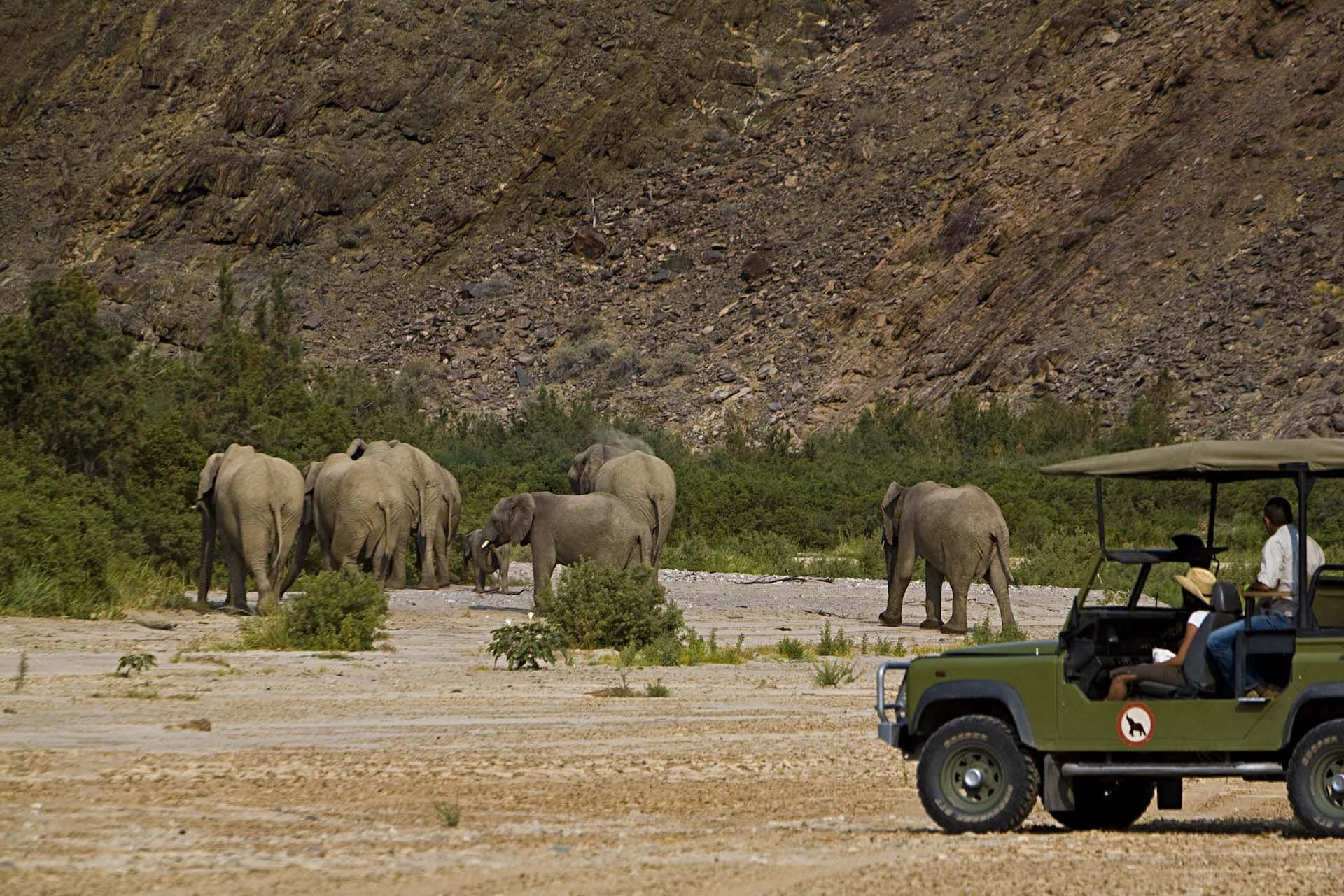 # FOTO - Okahirongo Elephant Lodge 077 OKA PL