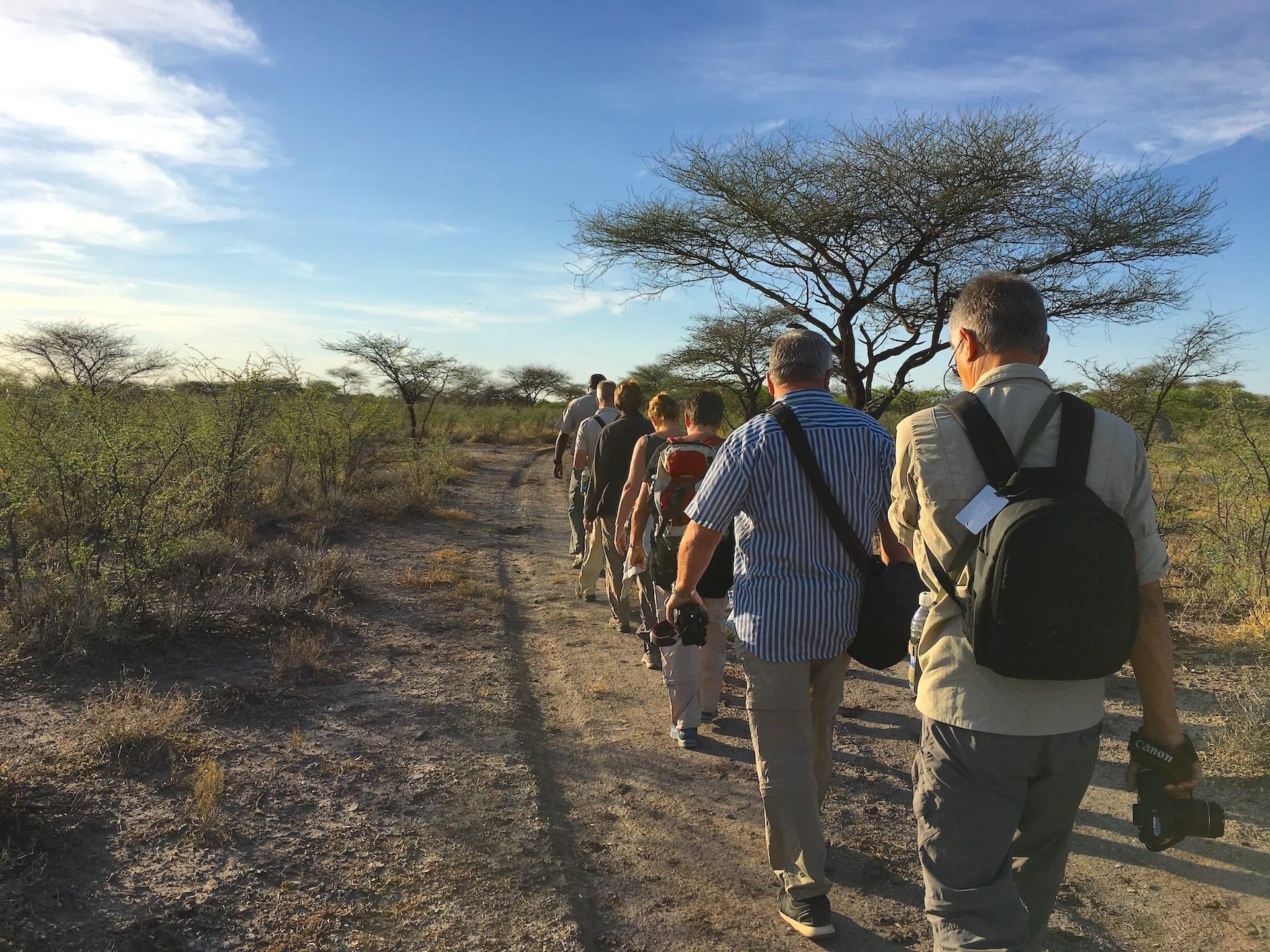 # FOTO - Onguma - wandel safari - GSM LEIN_4002