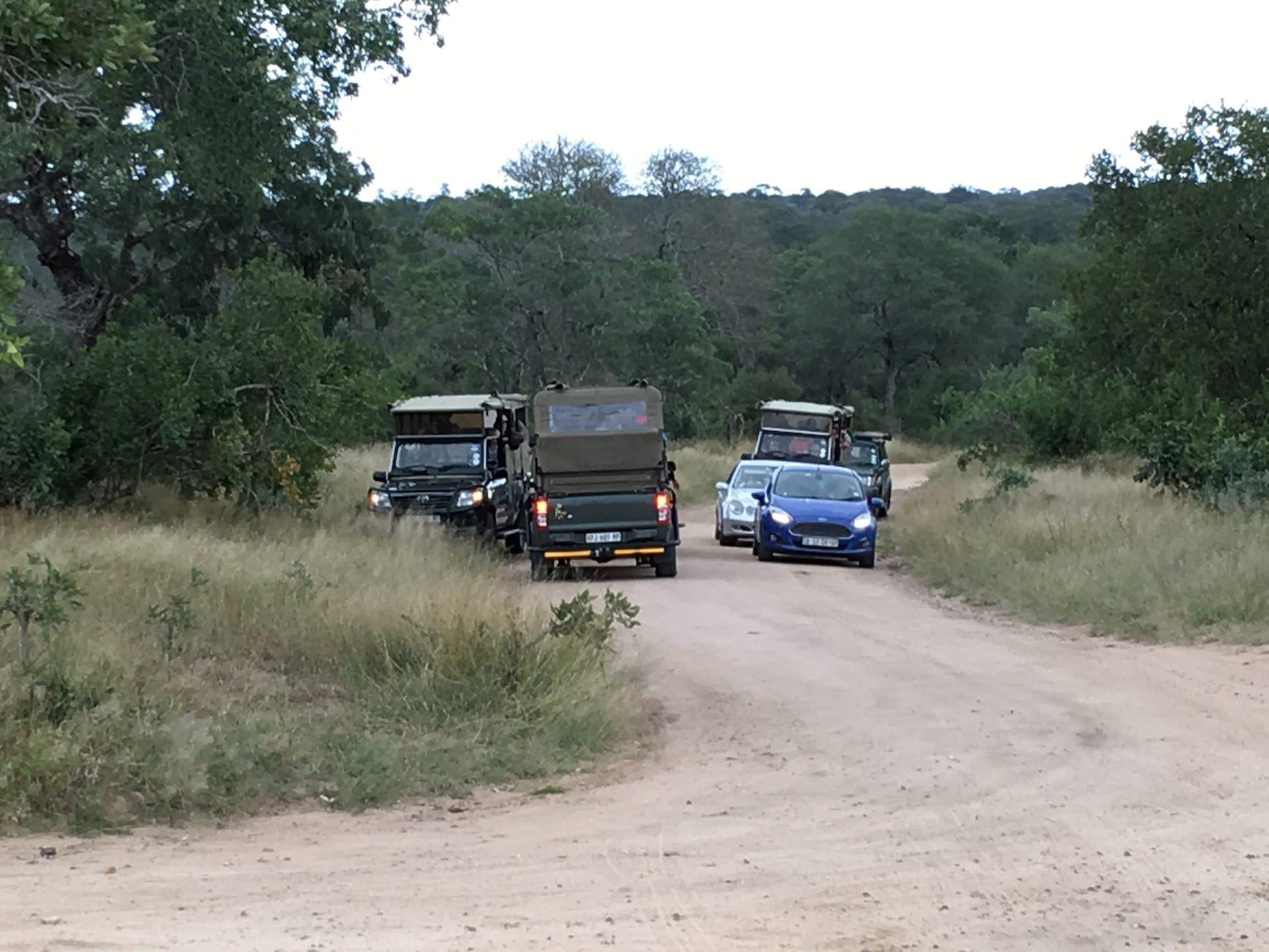 # FOTO - selfdrive Kruger - ZA - 2017 - IMG_5649