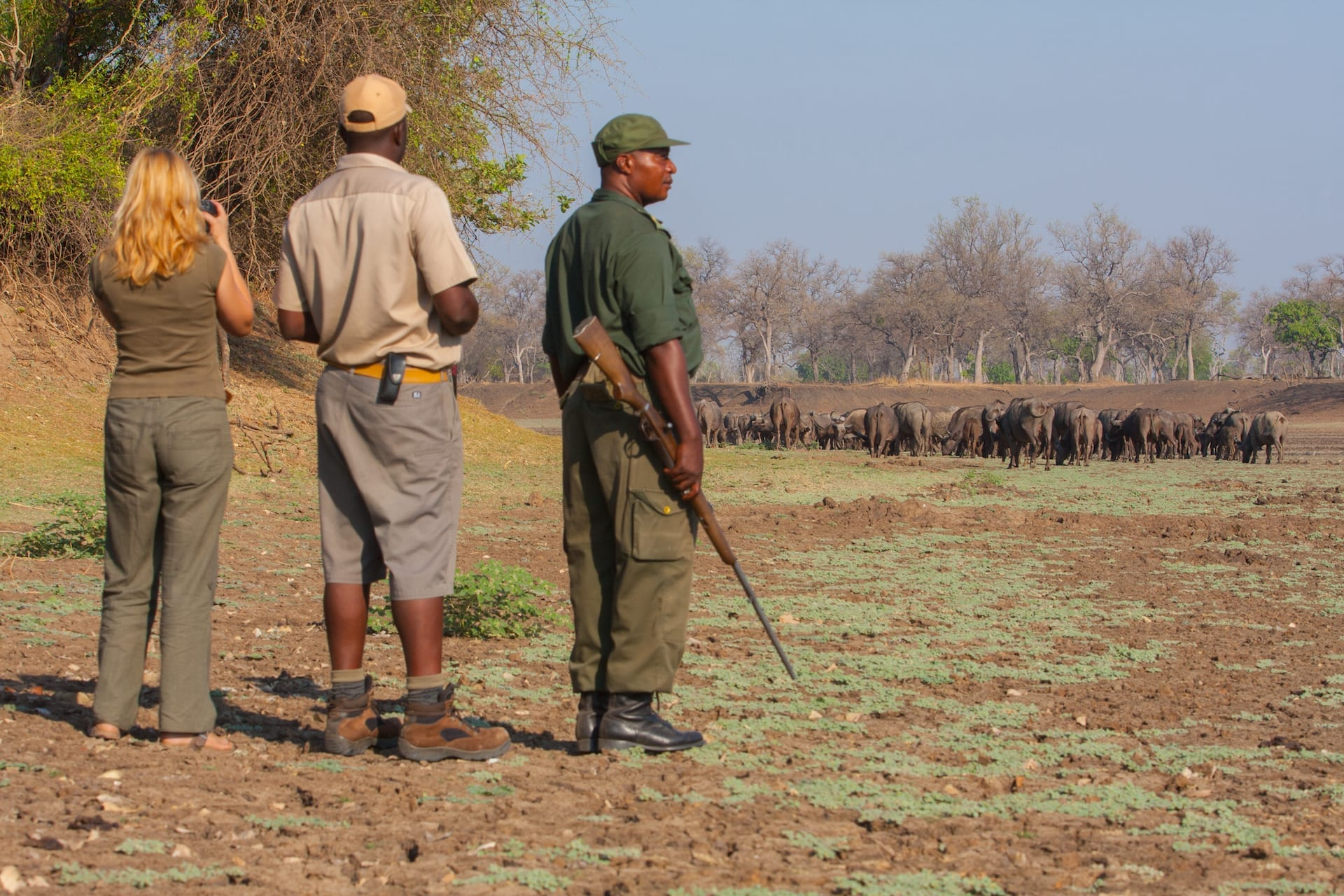 Track and Trail - Safaris_walk